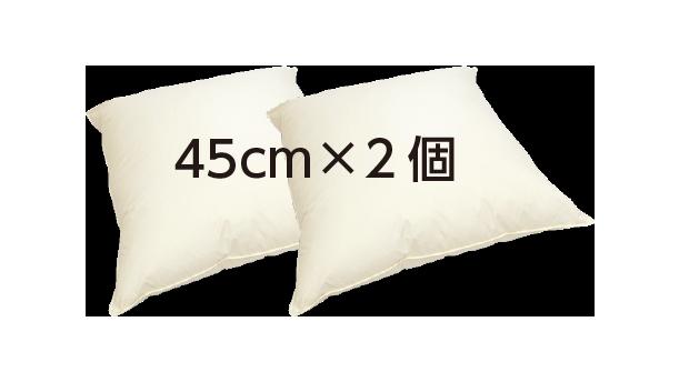 クッション C-45 2個セット