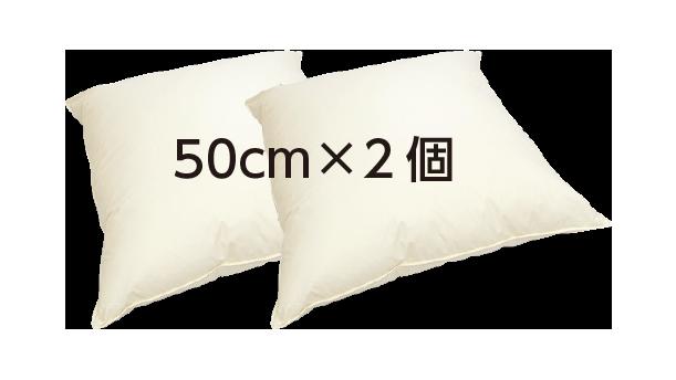 クッション C-50 2個セット