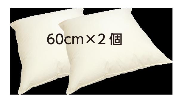 クッション C-60 2個セット